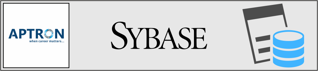 Best sybase training institute in gurgaon