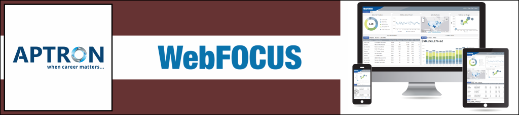 Best webfocus training institute in gurgaon